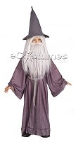 'Gandalf - Lord of the Rings' costume